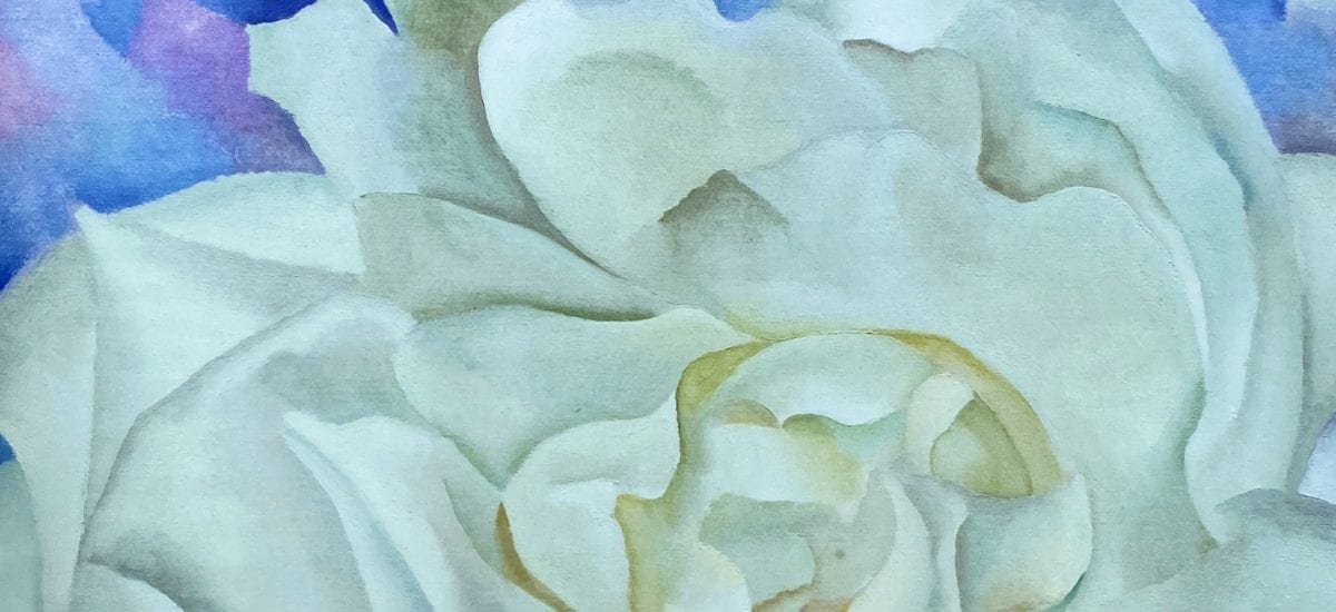 White Rose With Larkspur No 2 – Georgia O'Keeffe