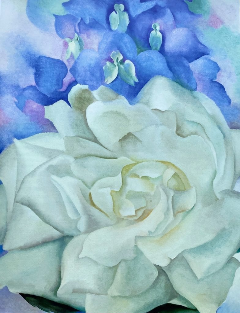 White Rose With Larkspur No 2 - Georgia O'Keeffe - 1927