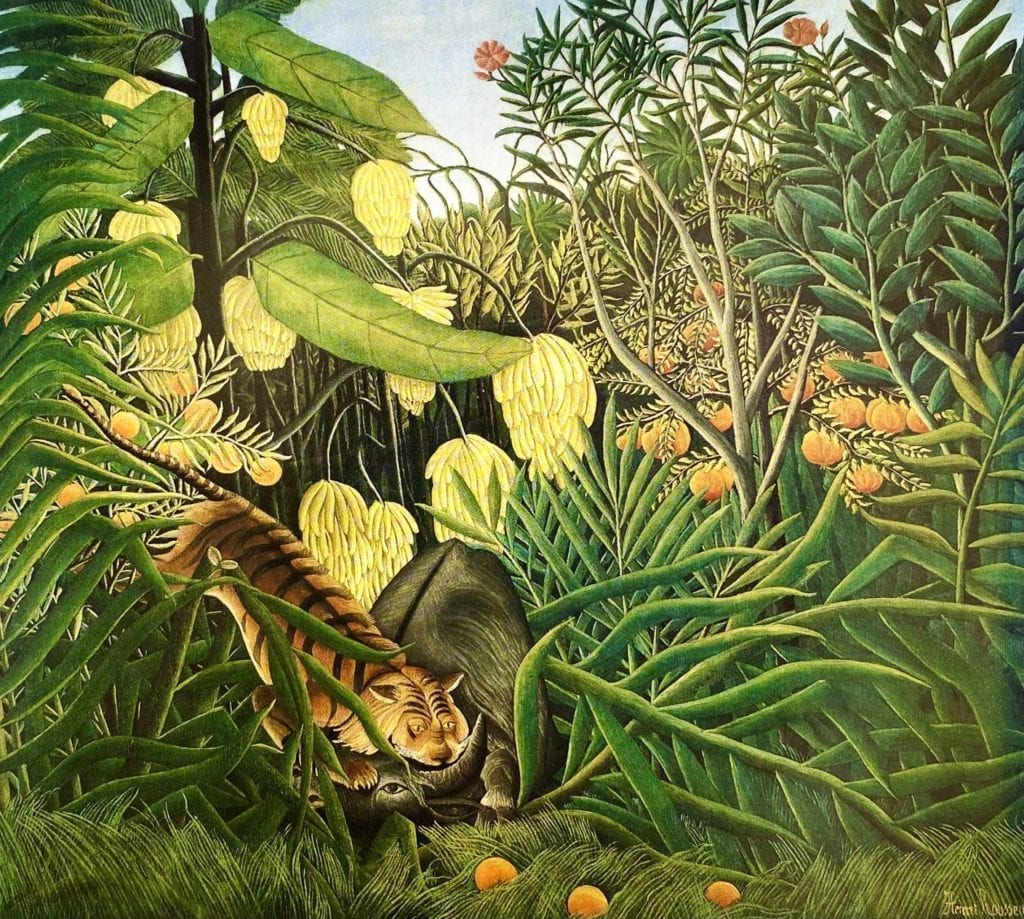 The Fight of a Tiger and a Buffalo painting by Henri Rousseau 1908